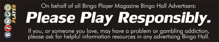bingo-player-psa___201111___please-play-responsibly